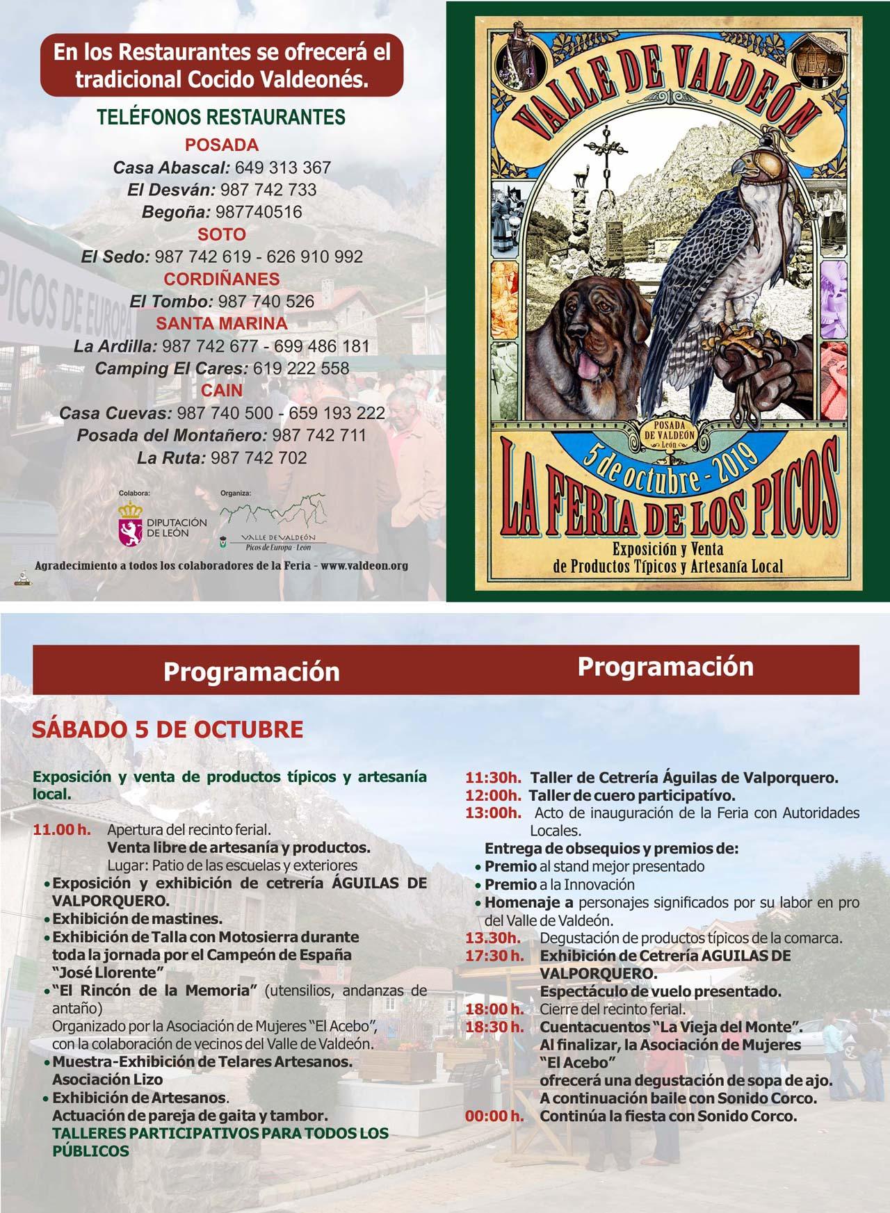 Programa Feria de los Picos 2019